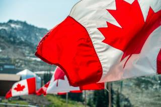 SIM REPORT: North America, Issue 2